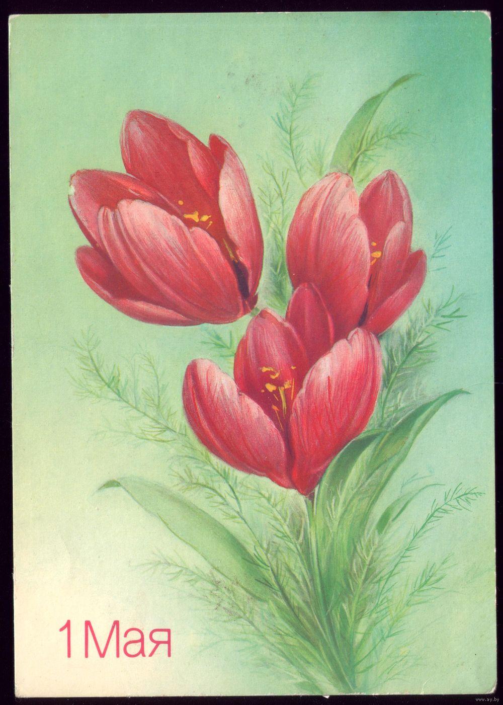 Цветы с 1 мая